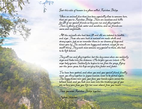 rainbow bridge poem quot rainbow bridge quot free printable poem pet loss