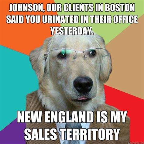 New Dog Meme - business dog memes quickmeme