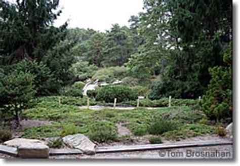 Chappaquiddick Island Garden Mytoi Garden Chappaquiddick Martha S Vineyard Ma