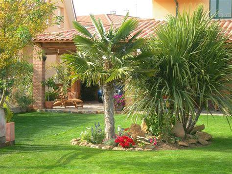 casas y jardines decoracion decoraci 243 n de jardines con palmeras