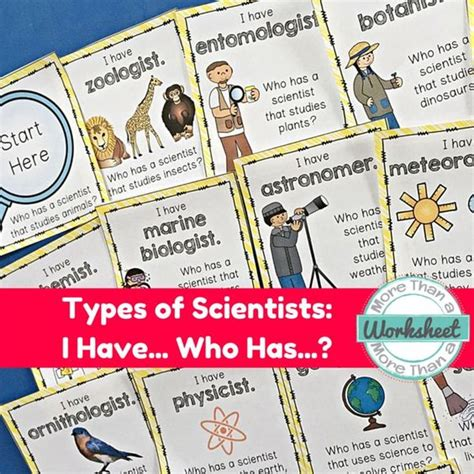 Types Of Scientists Worksheet by The World S Catalog Of Ideas