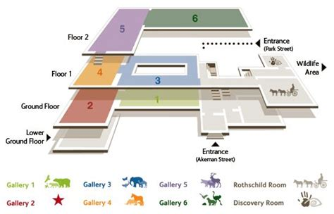museum floor plan design museum floor plan design google search corporate