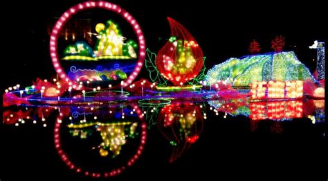 xmas lights in miami dade county lantern light festival south florida finds