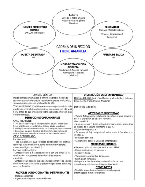 cadena epidemiologica lepra cadenas epidemiol 243 gicas de principales enfermedades