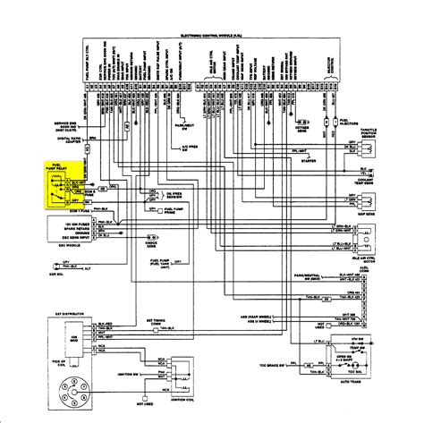 fuel relay wiring diagram wiring diagram