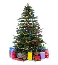 christmas tree permits available jackson hole media