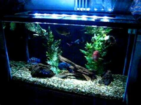 marineland pro lighting 48 marineland reef capable led lighting for saltwater aqua