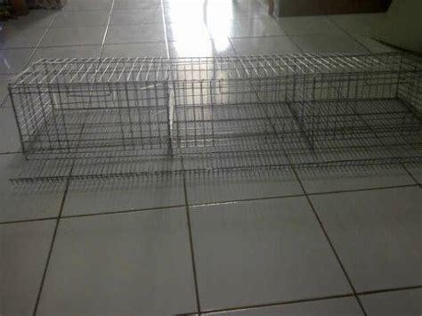 Harga Alas Kandang Ayam Petelur nipelunggas