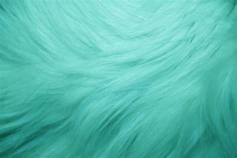 Fushia Rug Teal Fur Texture Picture Free Photograph Photos Public