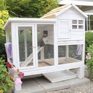 new rabbit hutches 25 best ideas about mini lop on lop