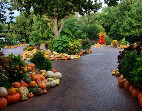 fall landscaping ideas the meadow fall landscaping ideas pumpkin decor