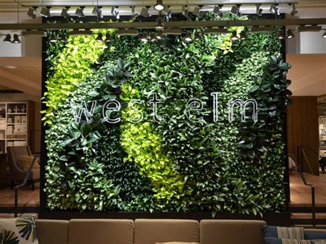 Sky Wall Mural west elm s living green wall is a first in kuwait green