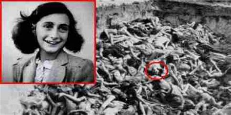 anne frank house biography biography of anne frank assignment point