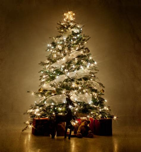 different ways to light a christmas tree pictures of decorated trees slideshow