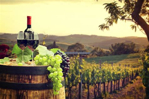 the italian dream wine 1614285195 red wine with barrel on vineyard in green tuscany stock photo image of closeup land 65900924
