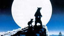 regarder vf la chasse à l ours complet film streaming vf hd l ours film 1988 allocin 233
