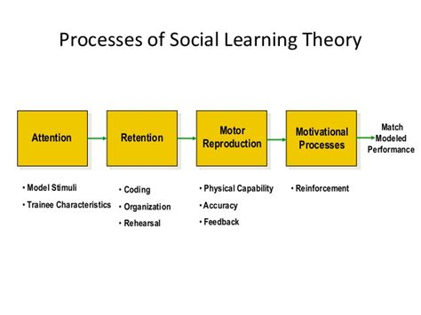 Andragogy Learning Theory Mba human resource and development