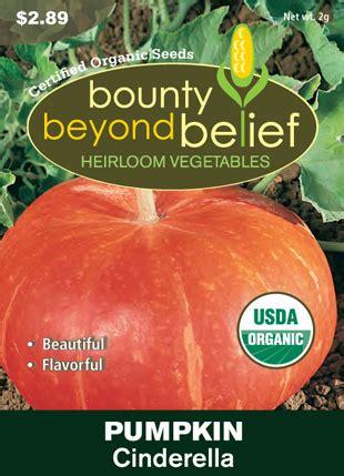 Mini Bell Tomato Seed organic heirloom mini bell pepper blend bbbseed