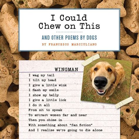 poems about dogs 10 bad poems about dogs i you not to smile rover