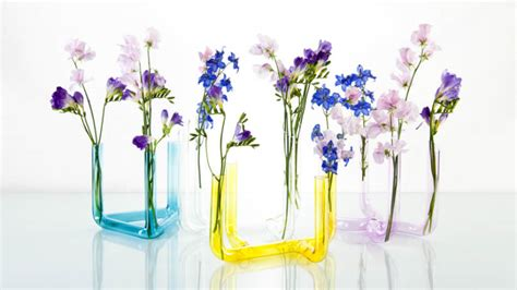 fiori in vaso da interno vasi da interno di design dettagli di stile dalani e