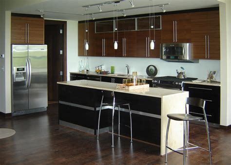 Condo Kitchen by Houzz Condos Studio Design Gallery Best Design