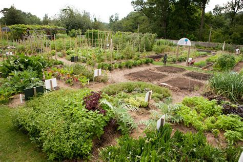 Gardens Howell by Ruth Rea Howell Family Garden Nybg