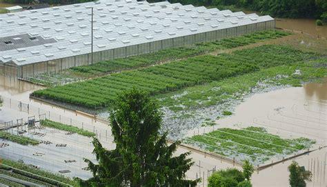 Garten Versicherung hortisecur 169 f gartenbau versicherung