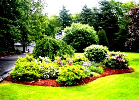 green simple landscaping ideas using mulch for front yard image gallery simple landscaping 28 images minimalist