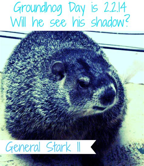 groundhog day last day groundhog day 2014 i stark