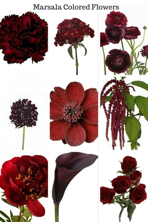 wine colored flowers 156 best images about burgundy marsala bouquets on
