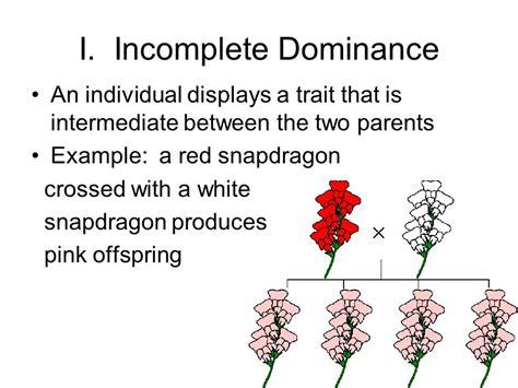 complex patterns of inheritance ppt video online download