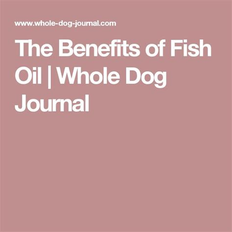 benefits of fish for dogs best 20 benefits of fish ideas on