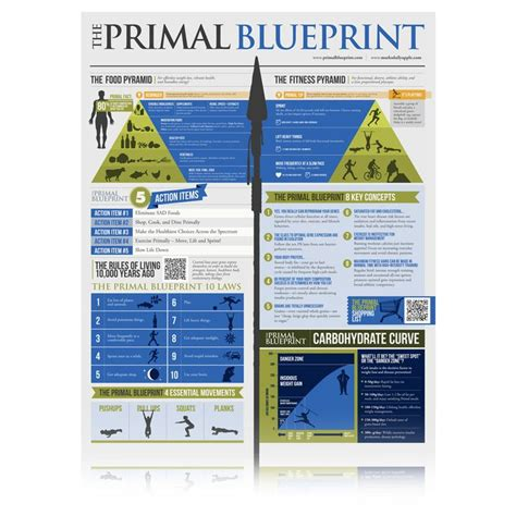 Primal Blueprint Detox by Primal Blueprint Diet Summary Gallery Blueprint Design