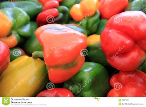 colored peppers multi colored peppers stock image image 16476031