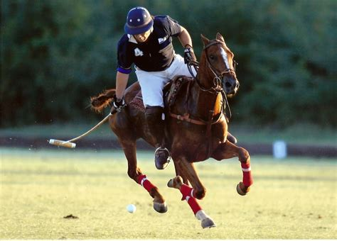 More Ponies For Polo by Netball Sports