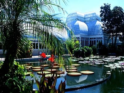 Manhattan Botanical Gardens Pin By Cich Jones On Places And Things Of Interest Pinterest