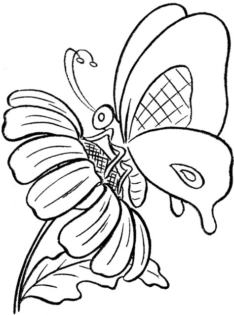 Coloring Pictures Of Flowers And Butterflies by Coloring Pages Of Flowers And Butterflies Coloring Home