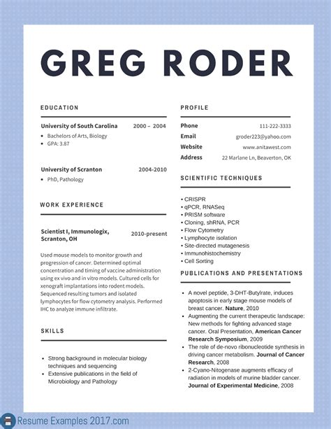 Job Resume Examples Template by Best Resume Examples 2017 Enom Warb Co