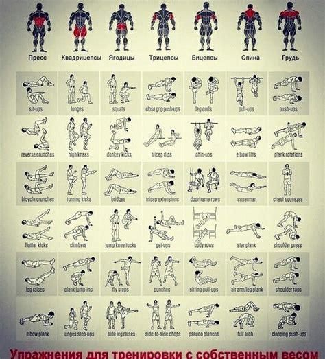bauchmuskeln trainieren zu hause 12 besten bauch bilder auf