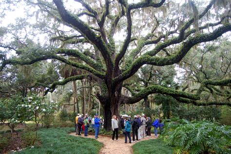 State Gardens by Nutritional Talk And Run At Washington Oaks Gardens