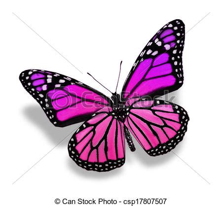 imagenes de mariposas color jade stock de ilustration de color mariposa aislado en