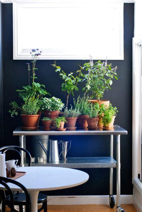 indoor herb garden ideas homemydesign