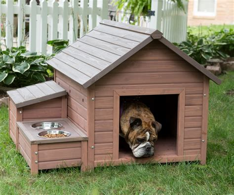 dog house nyc fancy dog houses in prodigious boomer george stair case dog house dog houses at