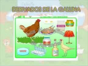 derivados de los animales derivados de la gallina imagenes de la gallina y sus derivados imagui