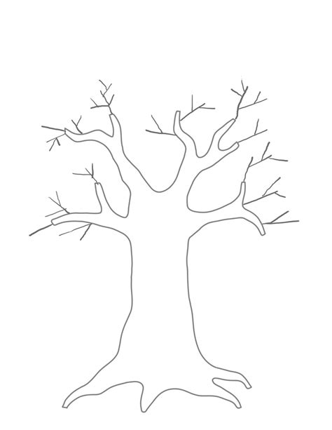 printable tree template printable tree template coloring home