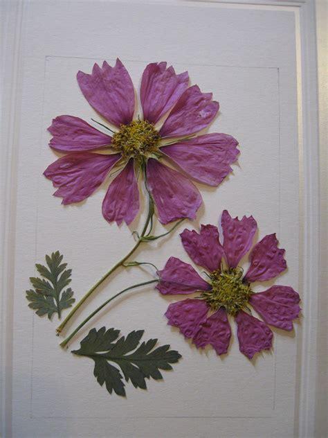 pressed pressedatlcom pressed flower designs 7