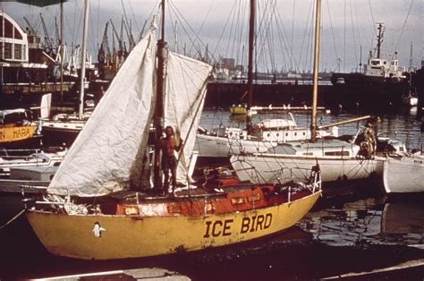 boats birds ice bird the unsinkable boat inside the collection