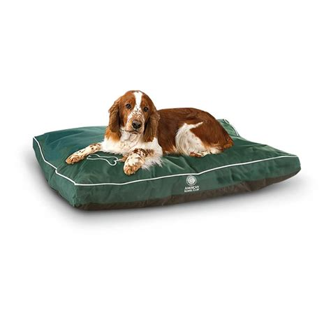 water resistant dog bed akc 174 water resistant dog bed 294121 kennels beds at sportsman s guide