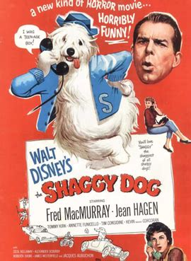 felpudo wikipedia the shaggy dog 1959 film wikipedia