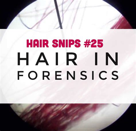 hair snips find stories hair snips find stories hair snips find stories hair snips